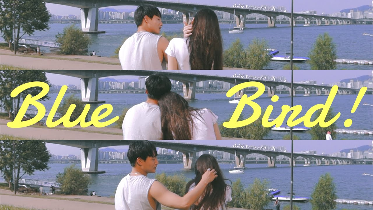 Jino Kim(김진오) 'Blue Bird' Lyric Video