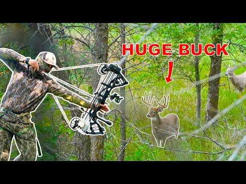 MASSIVE Buck at 30 YARDS!! North Dakota BOWHUNTING