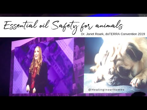 essential-oil-safety-for-dogs,-cats,-horses---the-essential-oil-vet,-dr.-janet-roark