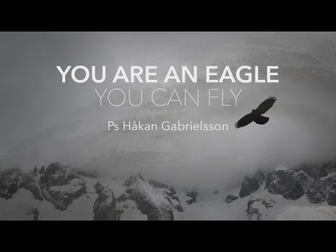 046 090615 You Are An Eagle You Can Fly