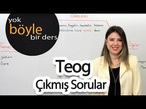 LGS - Türkçe - Çıkmış Sorular 2/3