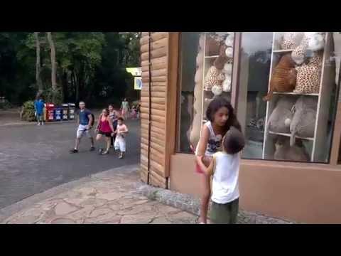 Passeio no Zoológico de São Paulo
