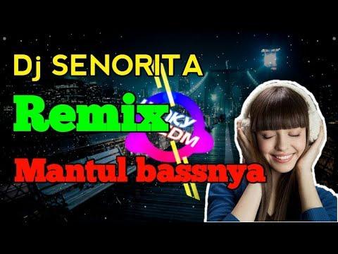 SENORITA DJ REMIX FULL BASS DAN MELODY🔉🔉🔉