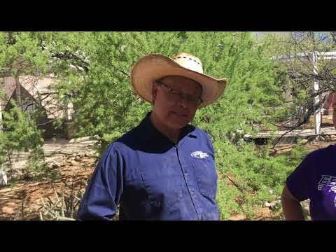 Watershed Management Group & Esperero Canyon Middle School