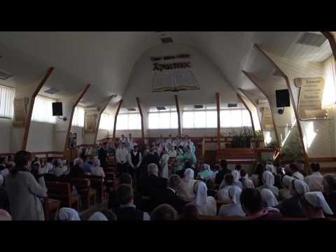 #83 Свадьба Ани и Лэрри. Mennonite wedding in Ukraine 🇺🇦