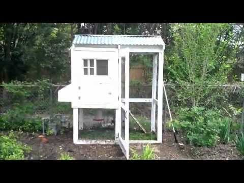 Backyard Chickens The Complete How to Guide Plus Coop Tour [CC]