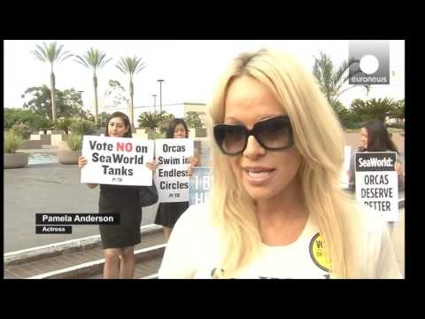 Pamela Anderson | VEGAN HERO