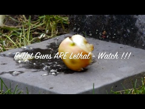 How to make crosman pellet gun shoot 500 fps faster, penetration test .177 .22 lethal 900+ fps