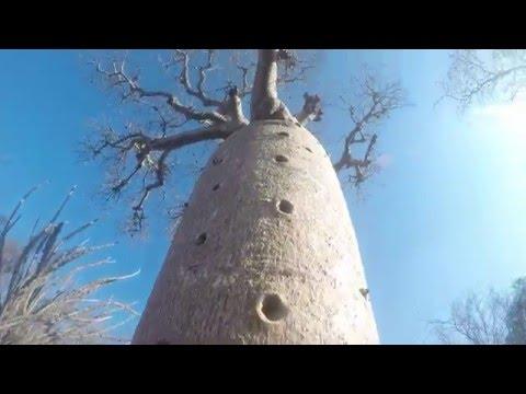 J8 Madagascar Ranohira Ifaty GoPro
