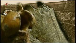 Homo heidelbergensis (1/3)