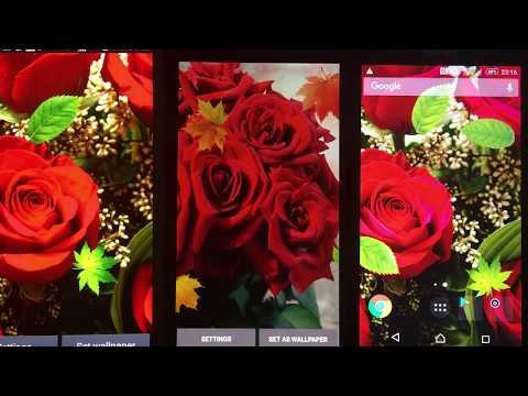 Beautiful Rose Free Live Wallpaper Apps On Google Play