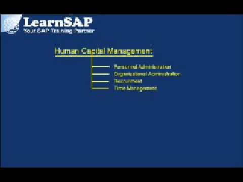 Introduction To SAP HR - SAP Human Capital Management Configuration | SAP HR Overview ( Part 1 )