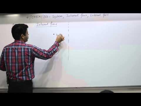 Class 10+1, Chapter 5A, Question 3, System, Internal force, External force