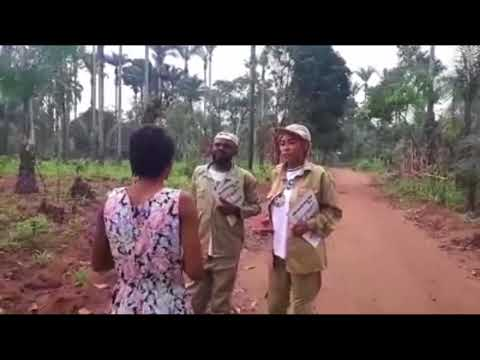 Chief Imo Comedy || honorable chief imo in  village corpers