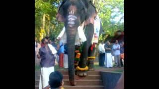 Thrikkadavoor Sivaraju Song.wmv
