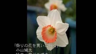 「祭りの花を買いに行く」詩曲:友川かずき 唄:小山健太 小山健太HP ht...