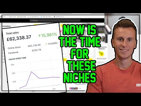 NOW IS THE TIME For These Niches | Q2 2019 TRENDING SHOPIFY NICHES thumbnail