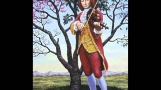 Antonio Vivaldi - Concerto N.6 RV 316a - I Solisti Veneti