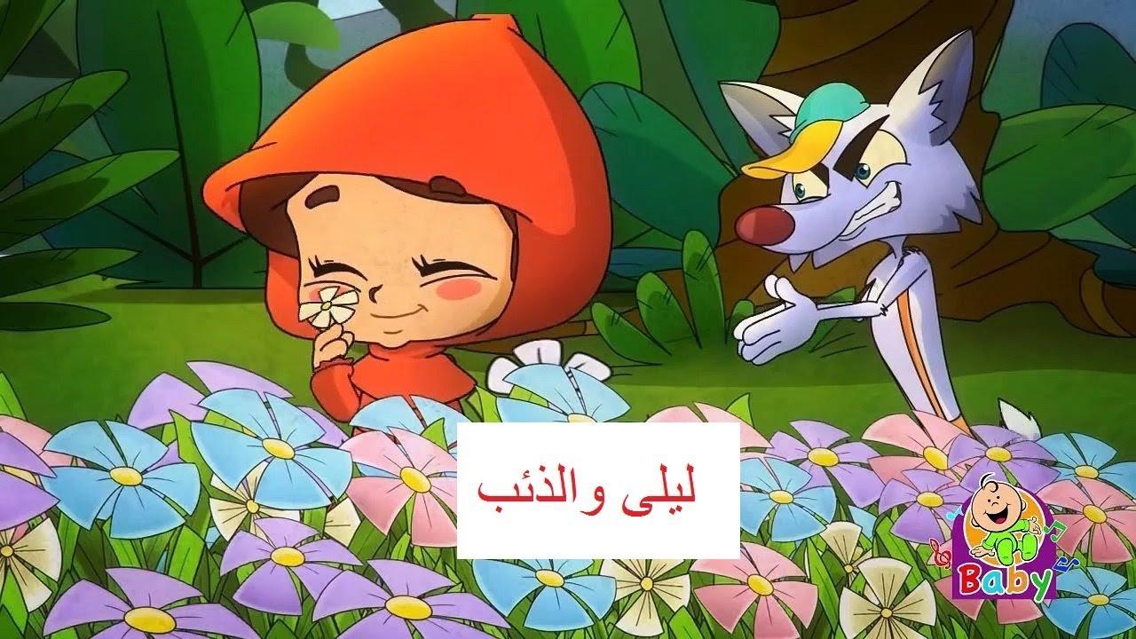 ليلى يا ليلى ليش عم تبكي - ليلى و الذئب - قناة طيور الجنة بيبي