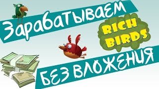 Rich birds (рич бердс) Лохотрон или заработок ?