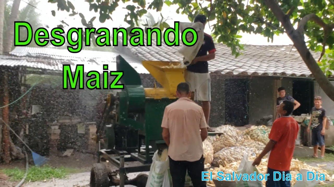 Desgranando el maiz en familia | El Salvador Daily | videos de El Salvador