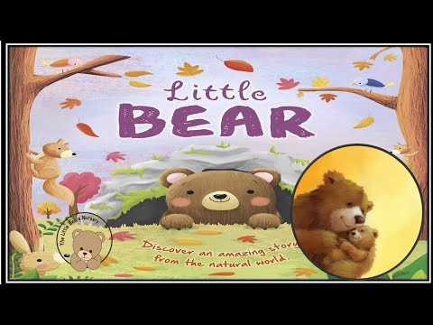 Bedtime Stories for Kids in English | Story-time | Moral Story | Bedtime Story of little bear