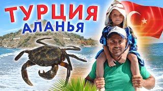 Турция Аланья семейный выезд на море поймали краба Сергей Пынзарь Дарья Пынзарь