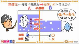 出直し看護塾-アニメ_06_浸透圧