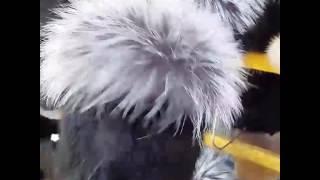 Меховые шапки оптом и в розницу.  от производителя СемаМех. Оптовая цена на сайте www.cemameh.tiu.ru(, 2017-03-26T14:07:14.000Z)
