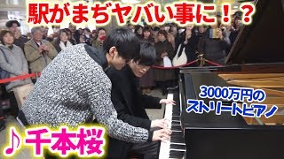 "I played ""SENBONZAKURA"" on piano with Crazy Friend in public."
