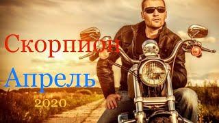 Скорпион ♏️ Таро-прогноз на Апрель 2020 года 🌈