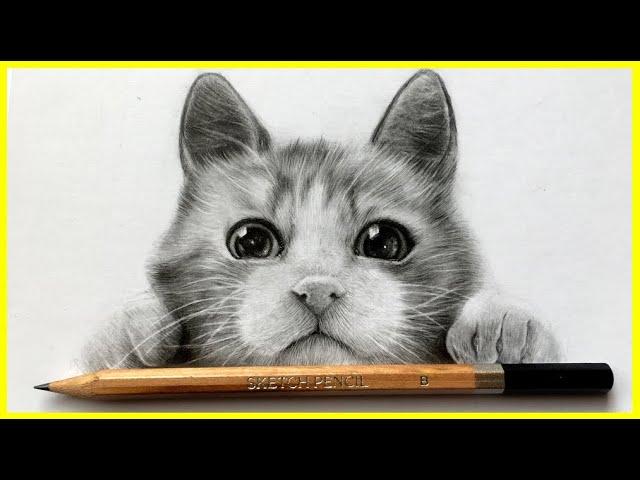 #1😻Como dibujar UN GATO realista ( Como Dibujar animales )  MUY FACIL
