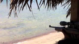 ابو حمد - صيد سمك بالناري 2