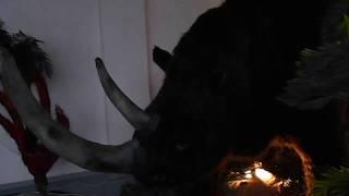 18. Гиганты Ледникового периода - Шерстистый носорог