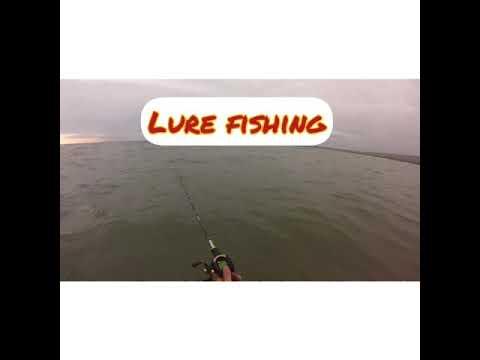 Lure Fishing, Westward Ho.
