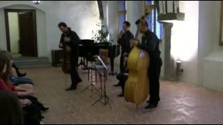 Shadow Quartet Zahrádka