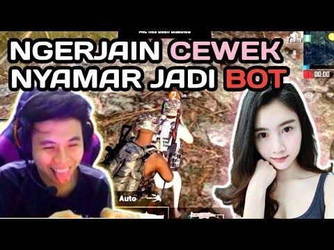download PURA-PURA JADI BOT GANGGUIN CEWE BARU MAEN PUBG MOBILE - PUBG MOBILE INDONESIA