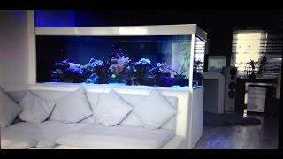 █▬█ █ ▀█▀ Meerwasseraquarium Standzeit 01.01.2013 - 15.04.2013 - 1638 Liter - L230xT95xH75x