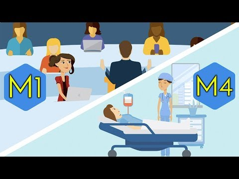 MEDICAL SCHOOL - 4 Years EXPLAINED
