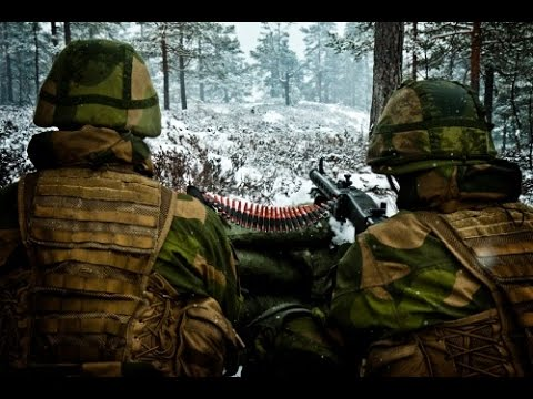 Norwegian Army Issued MG3