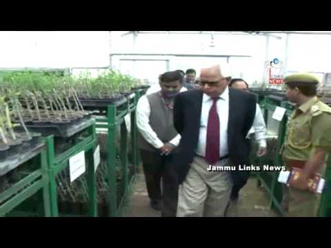Governor inaugurates Shrine Board's Nursery at Kunia
