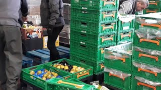 Voluntarios del Banco de Alimentos de La Rioja