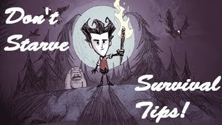 Don't Starve - Tips and Tricks! How to Survive Forever!