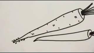 How to draw radish