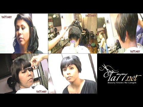 TA77.net video   Page