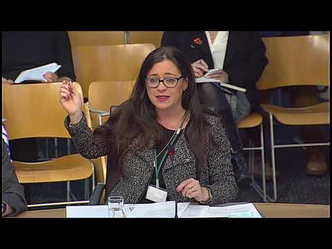 Education and Skills Committee - 4 October 2017