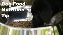 Dog Food Nutrition Tip