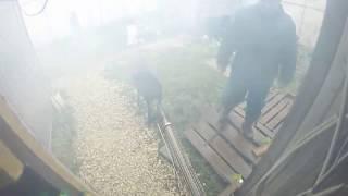 видео Уничтожение клопов в Москве – распространенная услуга