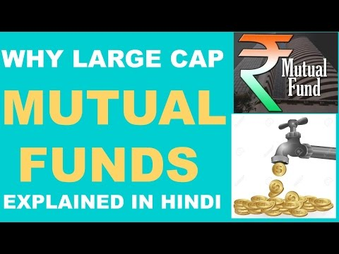 TOP LARGE CAP (MUTUAL FUNDS) FOR 2017. EXPLAINED IN HINDI