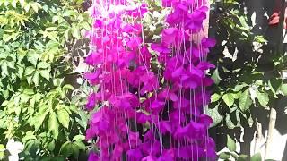 Цветочные гирлянды из бумаги тишью ( Floral garlands of paper silently ) 2
